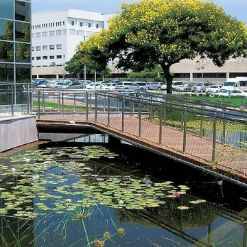 מעקה דגם ספיידר תוצרת רייל טאצ' בשביל הכניסה לבית חולים תל השומר
